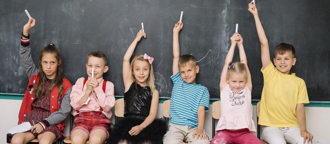 Deficiência Intelectual e a Inclusão Escolar